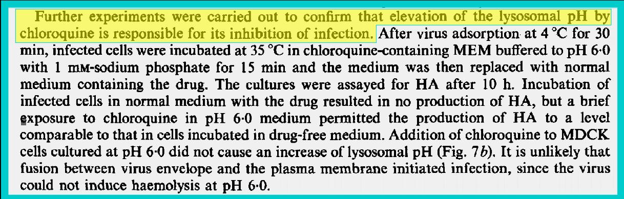Hydroxychloroquine Chloroquine Influenza Flu Infection Vaccination