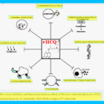 HCQ Effective Against HIV