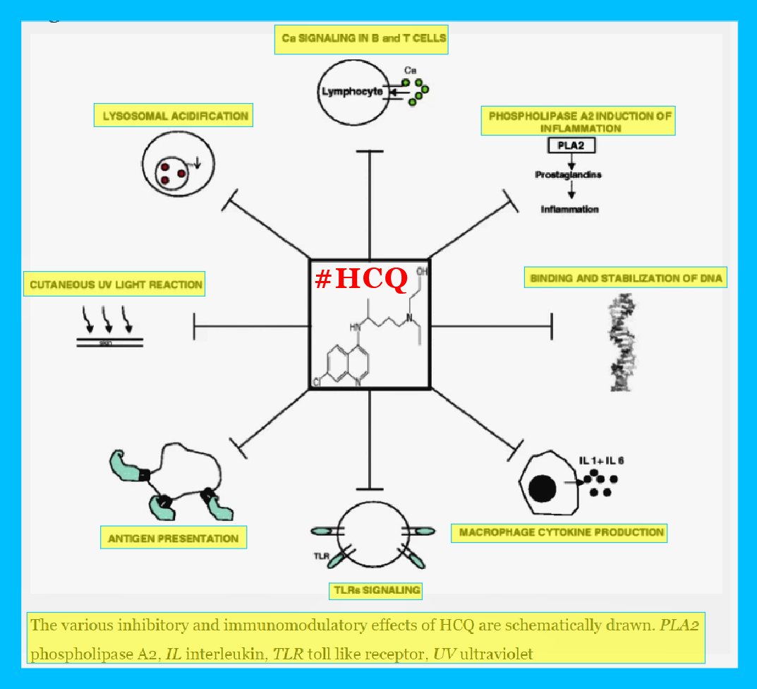HCQ Effective Against Herpes