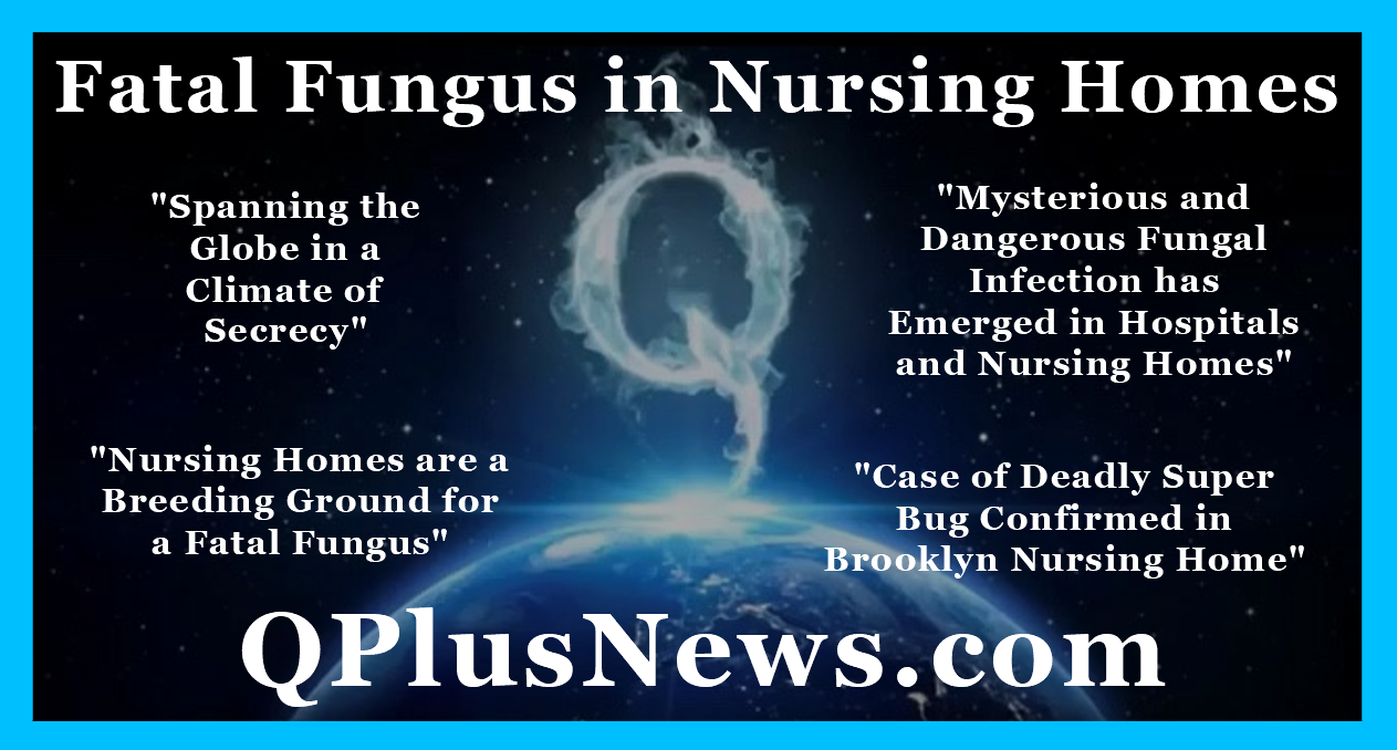 QPlusNews 2019 Fatal Fungus